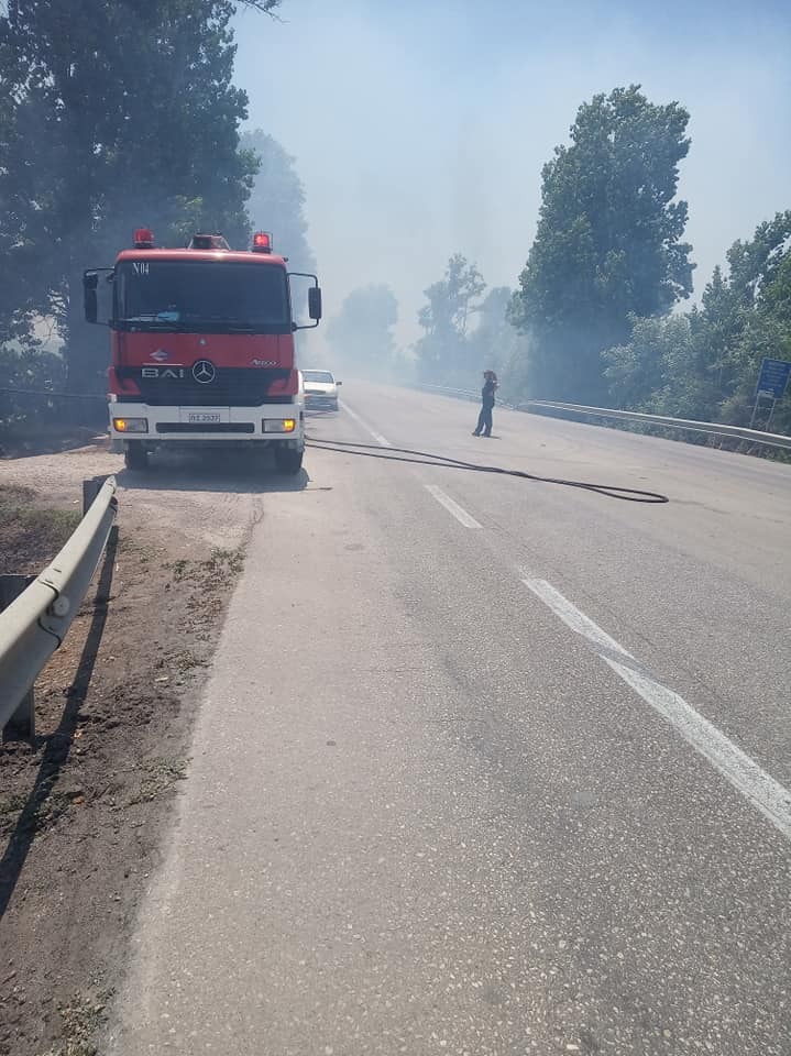 Γαστούνη: Φωτιά χθες το μεσημέρι στην Εθνική Οδό Πύργου-Πατρών (Photos)