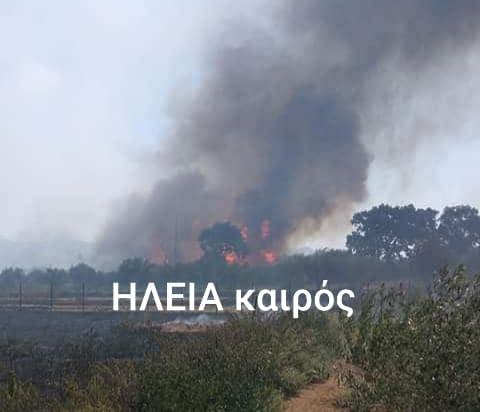 Βάρδα: Υπό έλεγχο η μεγάλη πυρκαγιά που έκαψε γεωργικές εκτάσεις με χαμηλή βλάστηση και ελαιόδενδρα-Πλησίασε τα πρώτα σπίτια της πόλης- Κλειστή αρκετό διάστημα η Ε.Ο. Πατρών – Πύργου (photos)- ΝΕΟΤΕΡΑ