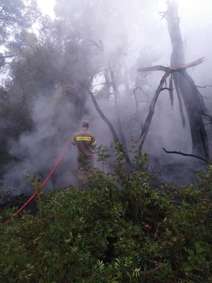 Φωτιά στο δάσος Στροφυλιάς λόγω κεραυνών- Άμεση και ισχυρή η κινητοποίηση της Πυροσβεστικής Υπηρεσίας (Photos)