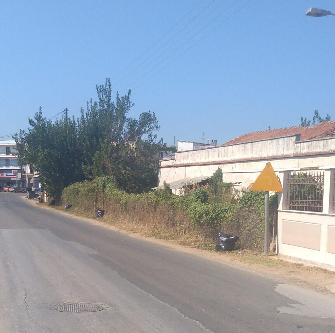Δήμος Ανδραβίδας-Κυλλήνης: Σε «μαραθώνιο δράσης» οι Αντιδήμαρχοι με έργα ανάπλασης και αποκατάστασης σε όλες τις περιοχές του Δήμου (photos)