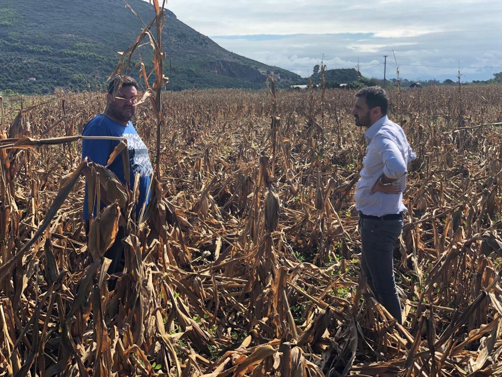Ανδρέας Νικολακόπουλος: Τα σημαντικά προβλήματα των Ηλείων αγροτών τέθηκαν σε συνάντηση με τον ΓΓ Αγροτικής Ανάπτυξης και Τροφίμων Γιώργο Στρατάκο