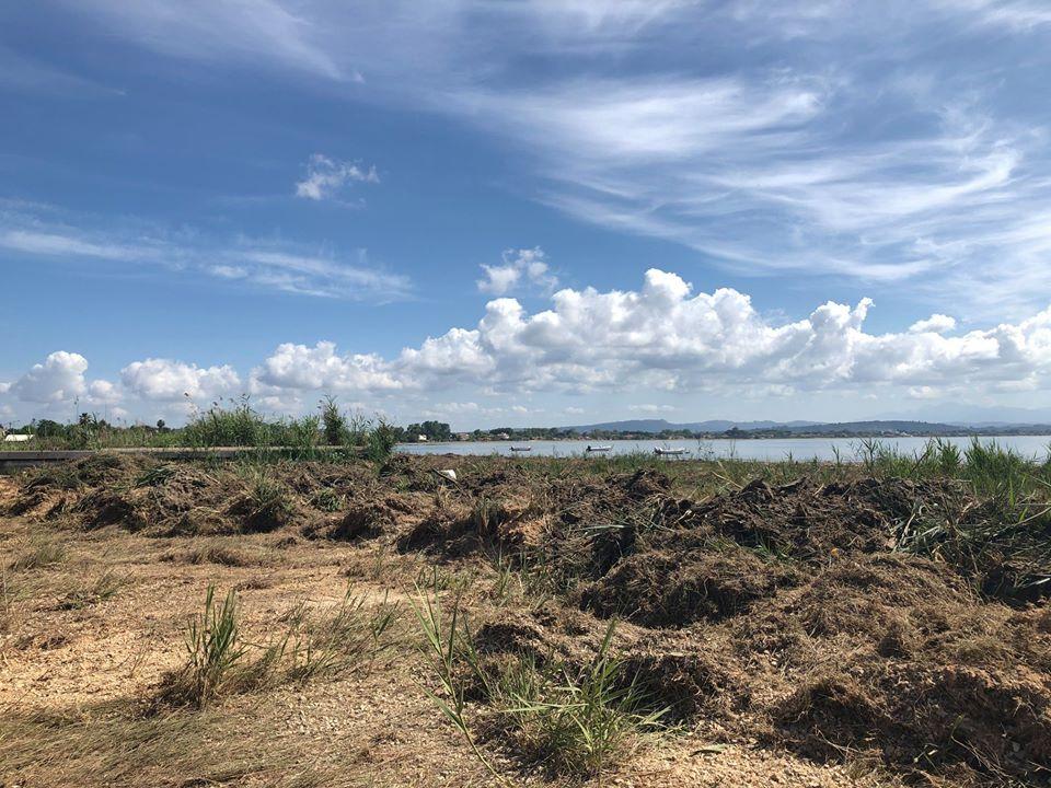 Δήμος Πύργου: Αλλάζει όψη η παραλία - Ξεκίνησε ο καθαρισμός της ακτής στο Κατάκολο (photos)