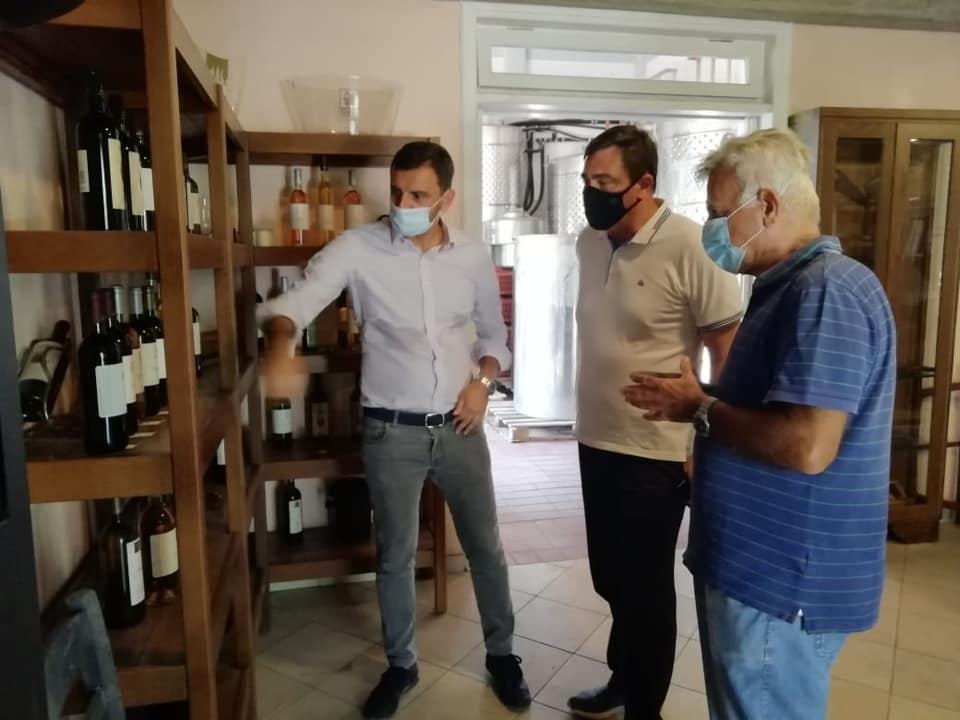 Ανδρέας Νικολακόπουλος: Αναγκαία η ενίσχυση  των οινοποιιών της Ηλείας - Επίσκεψη του Βουλευτή Ηλείας με τον Βασίλη Φεύγα σε Οινοποιεία του Νομού (photos)