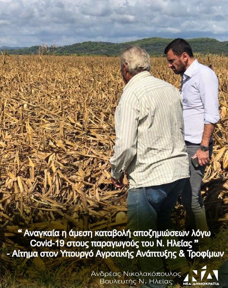 Ανδρέας Νικολακόπουλος: Επλήγησαν και στην Ηλεία οι θερμοκηπιακές καλλιέργειες - Αίτημα σε Βορίδη να να συμπεριληφθούν στο πρόγραμμα ειδικής ενίσχυσης