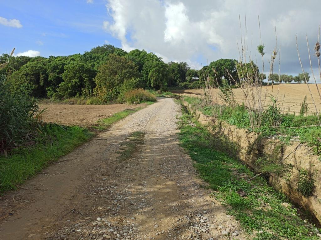 """Δήμος Ήλιδας: Εγκαταστάθηκε ο εργολάβος στο έργο """"Βελτίωση αγροτικής οδού στο τμήμα Χάβαρι- Αρχ. Ήλιδα"""""""