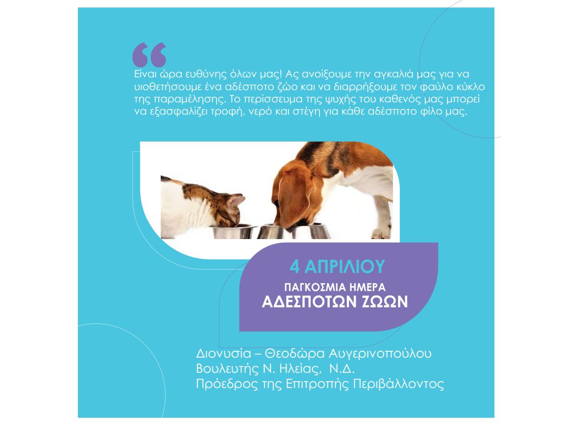 Mήνυμα της Δ. Αυγερινοπούλου για την παγκόσμια ημέρα αδέσποτων ζώων