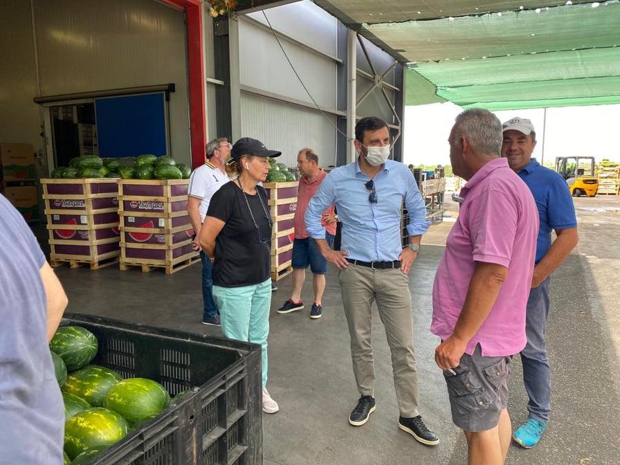 Ανδρέας Νικολακόπουλος: Οι τοπικές επιχειρήσεις τυποποίησης και εξαγωγής αγροτικών προϊόντων αναδεικνύουν την τοπική οικονομία- Επισκέψεις σε μονάδες του ηλειακού κάμπου