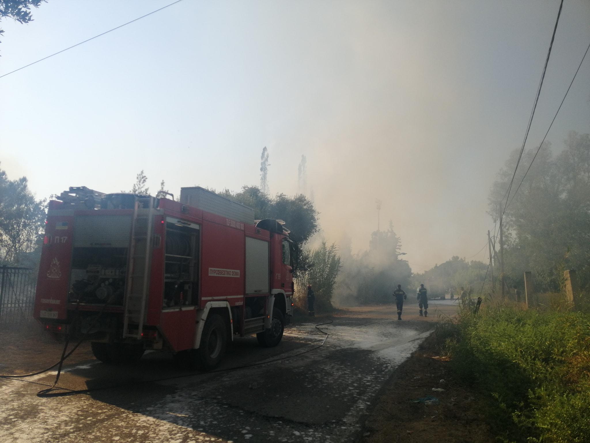 Λεχαινά: Τέθηκε υπό έλεγχο η φωτιά δίπλα στο δημοτικό γήπεδο με άμεση παρέμβαση της πυροσβεστικής και εναέριων μέσων (photos)